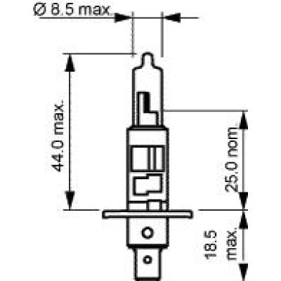 H1 Narva 12V-55W