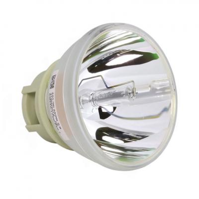Philips UHP Beamerlampe f. BenQ 5J.JE905.001 ohne Gehäuse 5JJE905001